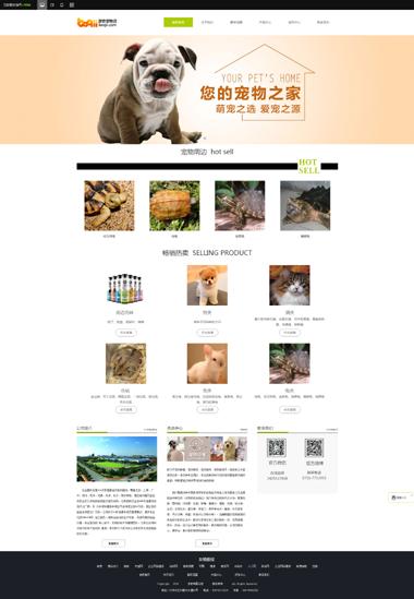 宠物网站模板-宠物美容网站制作-宠物食品网站设计