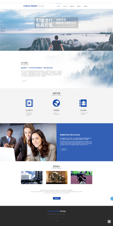 网站模板-企业网站营销-精品网站模板设计299元