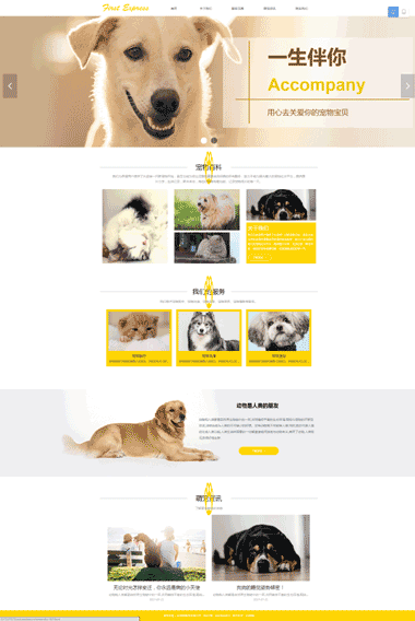 宠物服务网站模板-宠物服务模板网站设计-宠物服务模板网站素材图片