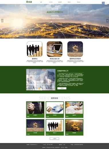财富管理网站制作-优化网站推广-域名主机购买