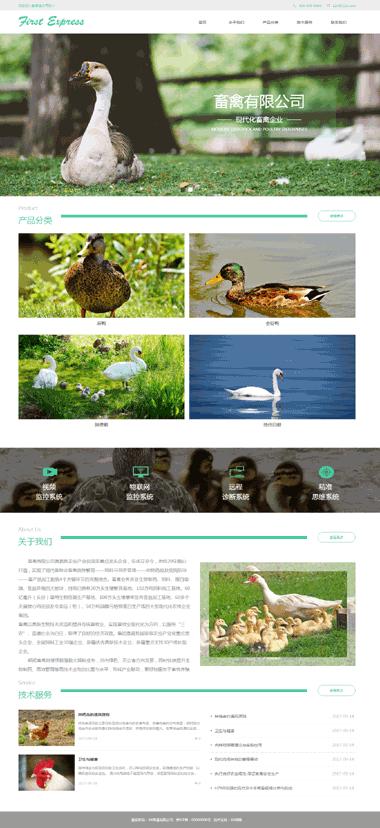 畜禽饲料网站制作-家禽网站优化排名-网站小程序制作