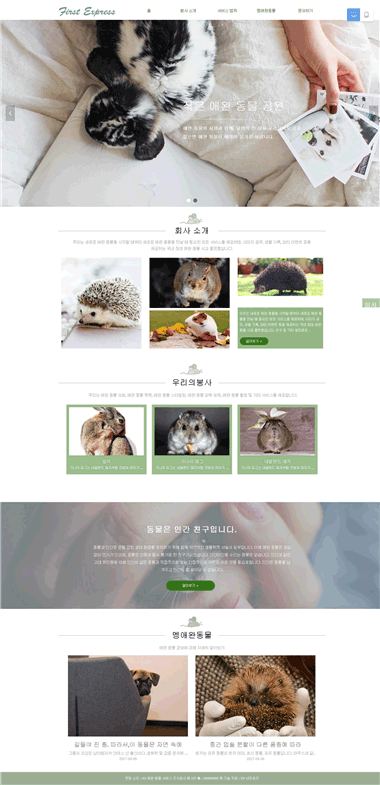 宠物网站制作-宠物用品网站模板-宠物网站优化