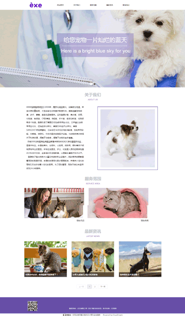宠物美容/医疗网站模板-宠物医院网站模板