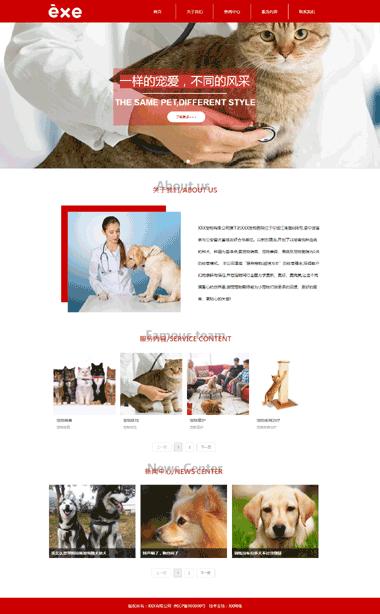 网站模板-宠物保健-宠物美容医院网站模板