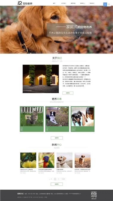 宠物寄养网站设计-宠物网站优化