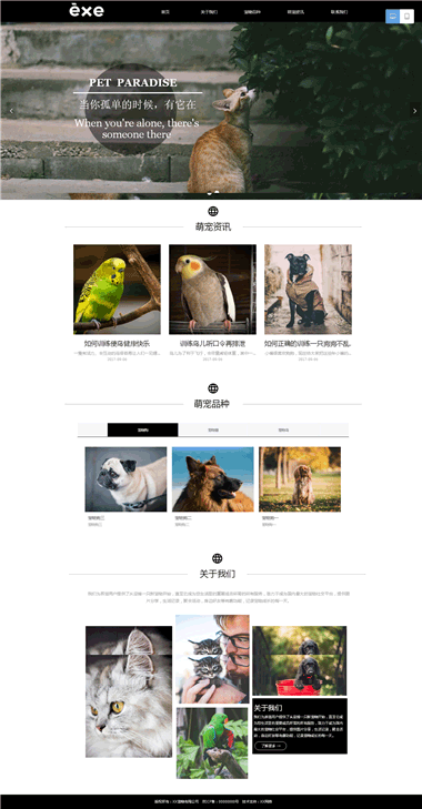 宠物网站制作-宠物网站备案-宠物网站排名优化