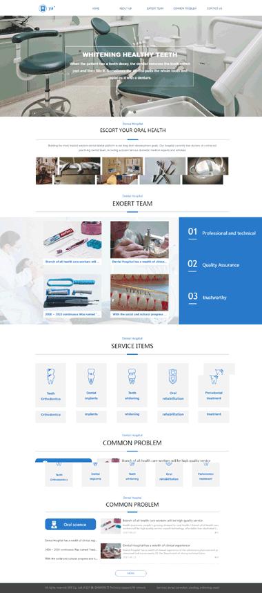 英文网站模板-中英文网站模板定制-器械模板网站
