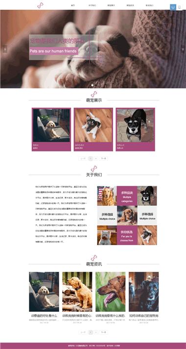 宠物网站模板-宠物建站系统-宠物网站优化