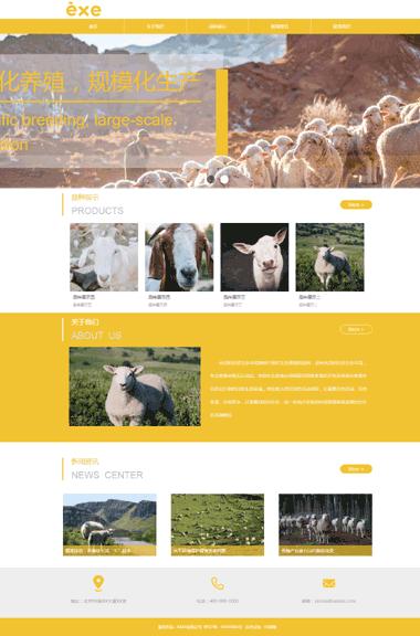 养殖畜禽网站设计-虚拟空间购买-小程序制作