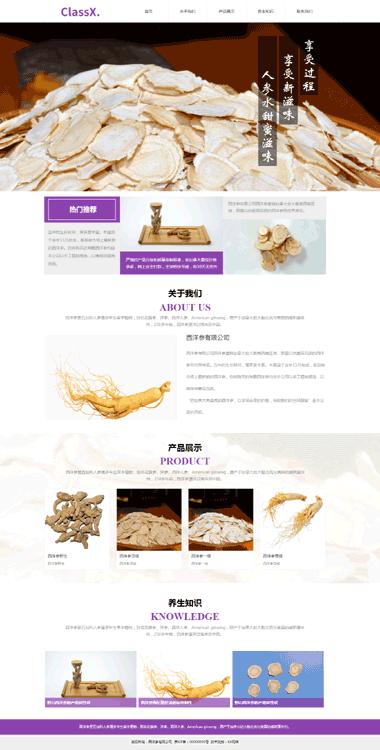 保健品网站模板-养生用品网站制作