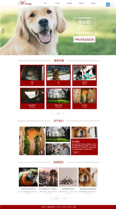 宠物服务网站制作-宠物网站优化-宠物网站设计